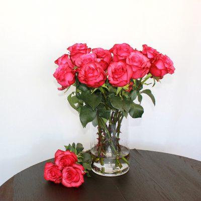 Pinke Rose Lola