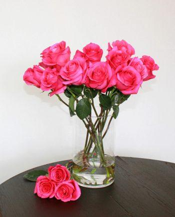 Pinke Rose Pink Floyd