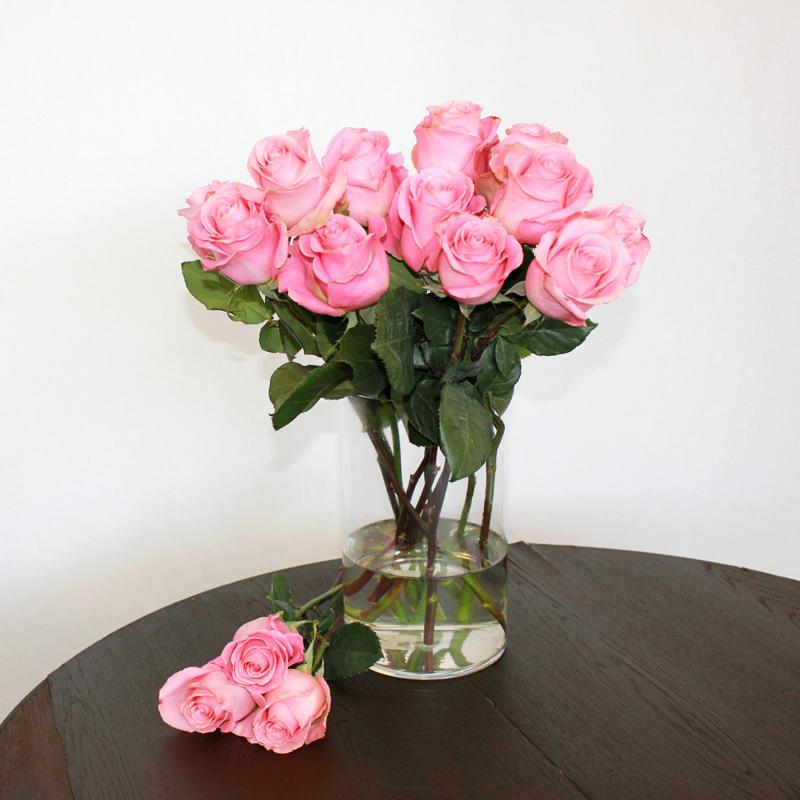 Rosa Rose Hermosa