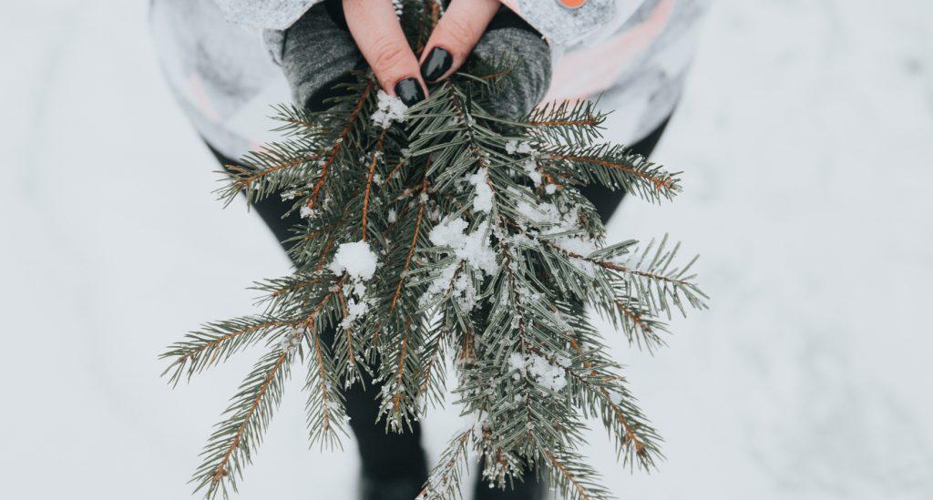 Wintertag Rosen schenken - mit LIEBLINGSROSEN in den Winter starten