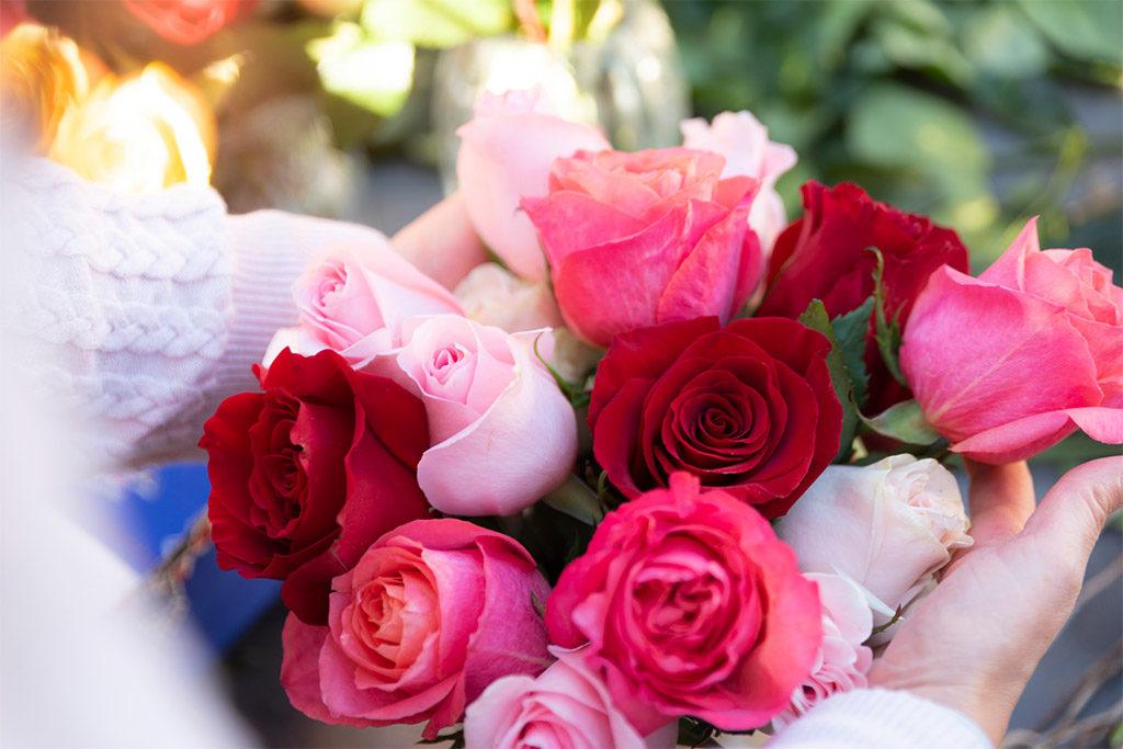 Über uns - Warum die Rose unser Liebling ist?
