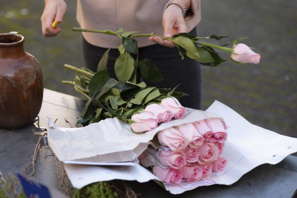 Über uns - Rosen werden angeschnitten