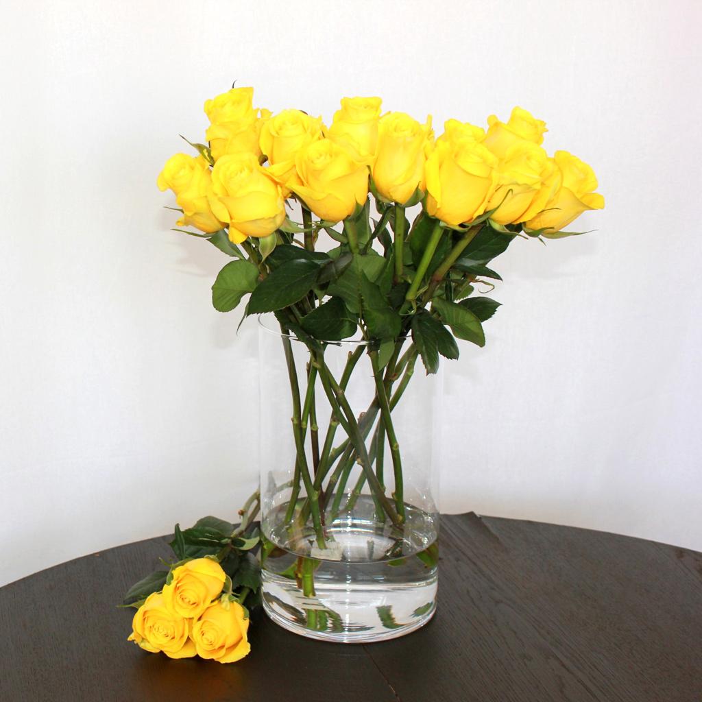 Gelbe Rose Brighton